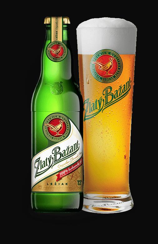 52dffc3622fc1 Zlatý Bažant12%. 12% svetlé pivo ...